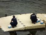 Ла-Корунья: морские котики атакуют.